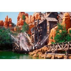 Chèques et cartes Cadeaux Disneyland Paris