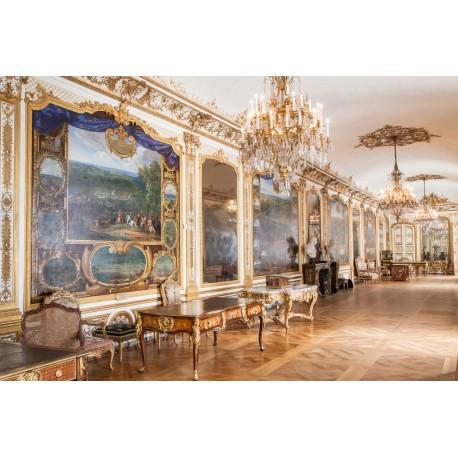 E-billet (e-ticket) Domaine de Chantilly + Spectacles - Adulte : à utiliser avant 23-12-2017
