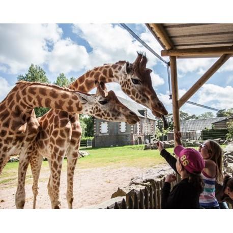 E-ticket - Zoo de Jurques - Billet Adulte - 2017 ou 2018