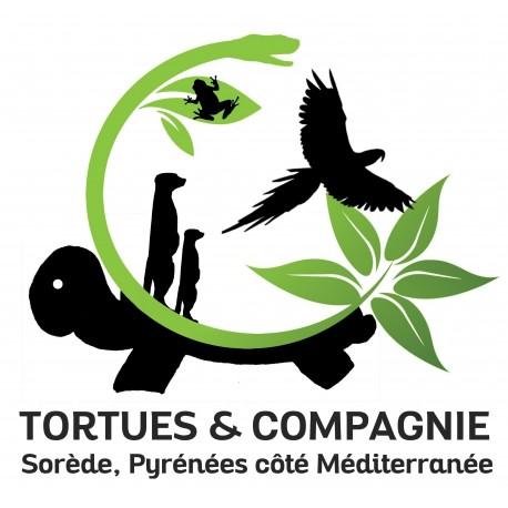 E-billet Vallee des tortues 1jr. Validité SAISON 2018/2019 (dpt 66)