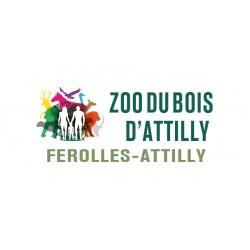 E-billet adulte 1 jour Zoo du bois ATTILLY Saison 2018 ou 2019 (dpt 77 )