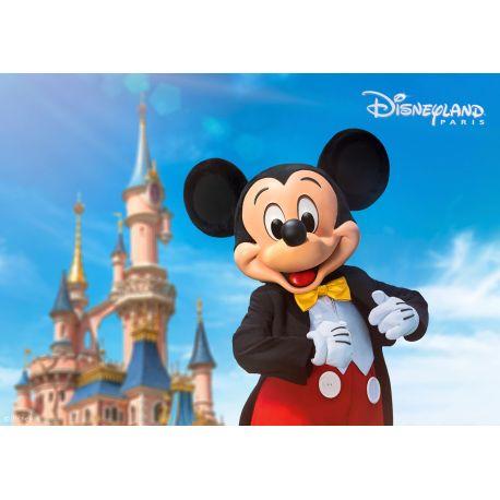 Billet Disneyland Enfant 1 jour 1 parc