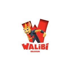Walibi Belgique Wavre - Billet, ticket, entrée promo