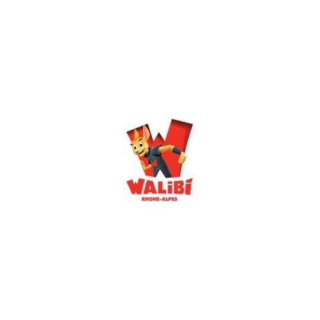 Reduction Walibi Rhône-Alpes