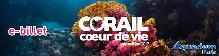 Aquarium de Paris moins cher